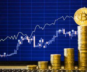Инвестирование в биткоин под 15-24 процентов в месяц